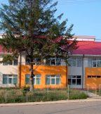 School in Codaesti