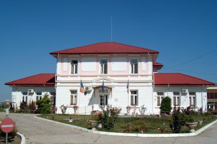 Centru de asistenta medico-sociala, Bacesti